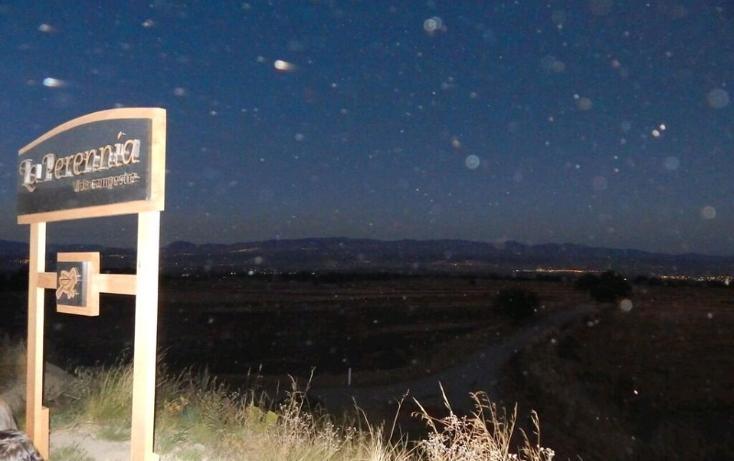 Foto de rancho en venta en  , la lima, huamantla, tlaxcala, 1111509 No. 11