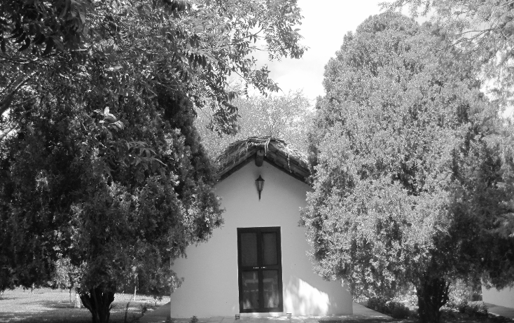 Foto de terreno habitacional en venta en  , la lobita, juárez, nuevo león, 1102757 No. 07