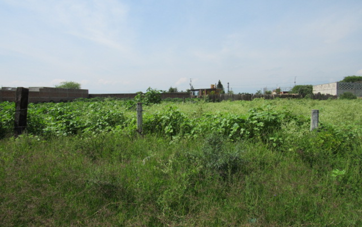 Foto de terreno habitacional en venta en  , la loma, tlajomulco de zúñiga, jalisco, 1307307 No. 02