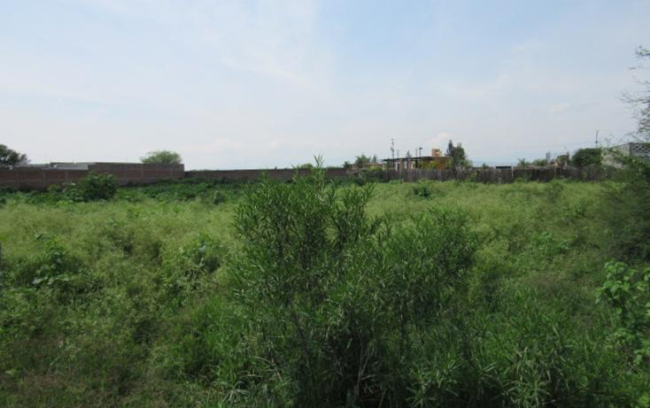 Foto de terreno habitacional en venta en  , la loma, tlajomulco de zúñiga, jalisco, 1307307 No. 06