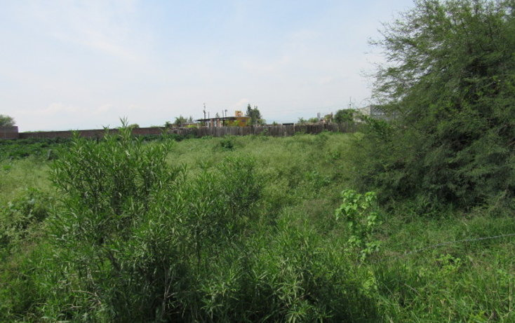 Foto de terreno habitacional en venta en  , la loma, tlajomulco de zúñiga, jalisco, 1307307 No. 07