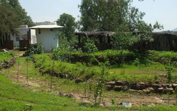 Foto de terreno habitacional en venta en  , la magdalena, tequisquiapan, querétaro, 1226973 No. 05