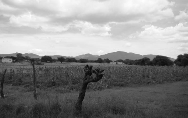 Foto de terreno habitacional en venta en  , la magdalena, tequisquiapan, querétaro, 1269349 No. 06