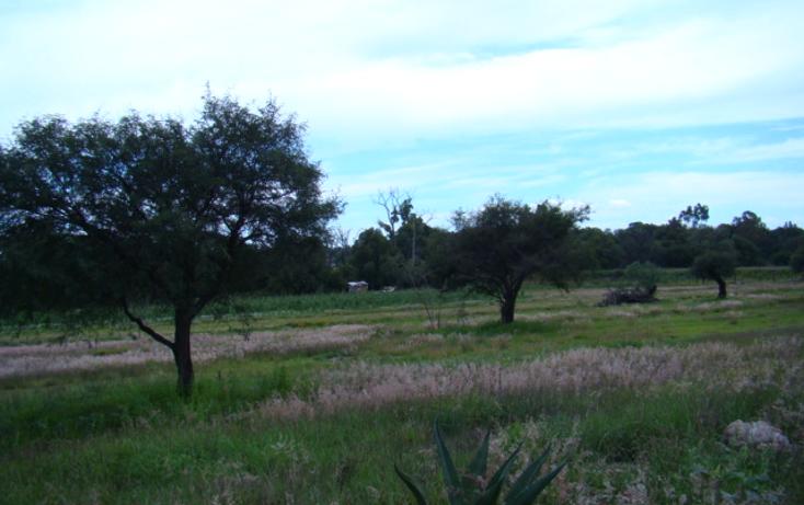 Foto de terreno habitacional en venta en  , la magdalena, tequisquiapan, querétaro, 1269349 No. 08