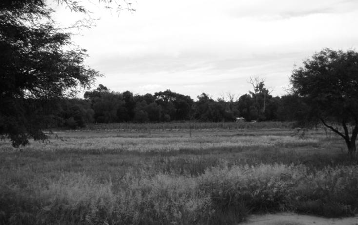 Foto de terreno habitacional en venta en  , la magdalena, tequisquiapan, querétaro, 1269349 No. 09