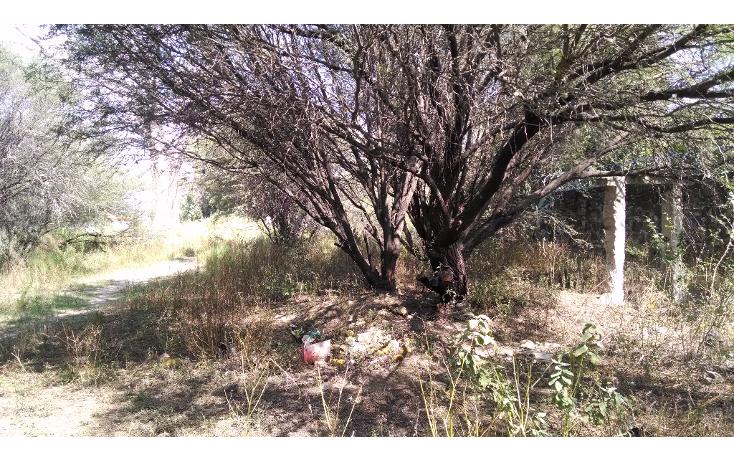 Foto de terreno habitacional en venta en  , la magdalena, tequisquiapan, querétaro, 1475019 No. 03