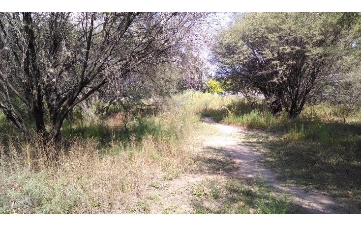 Foto de terreno habitacional en venta en  , la magdalena, tequisquiapan, querétaro, 1475019 No. 04