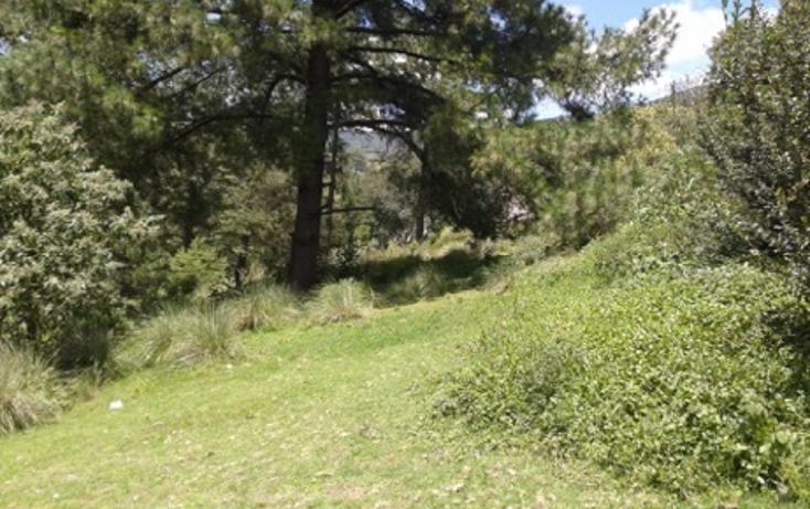 Foto de terreno habitacional en venta en la manzana de san carlos , monte de peña, villa del carbón, méxico, 1384443 No. 01