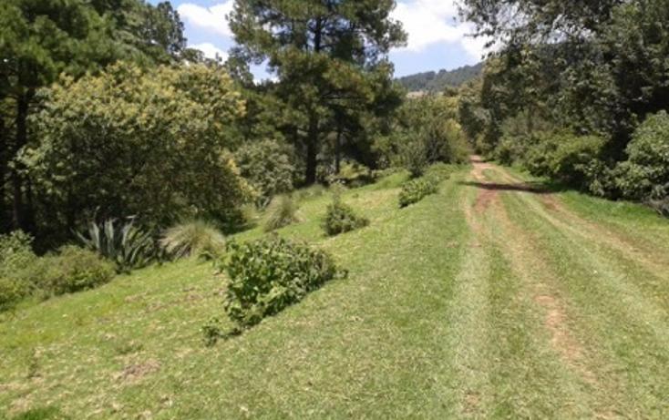 Foto de terreno habitacional en venta en la manzana de san carlos , monte de peña, villa del carbón, méxico, 1384443 No. 02