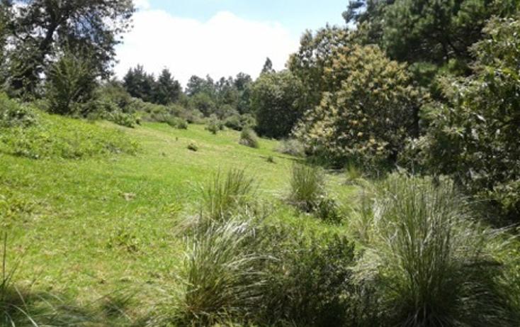 Foto de terreno habitacional en venta en la manzana de san carlos , monte de peña, villa del carbón, méxico, 1384443 No. 03