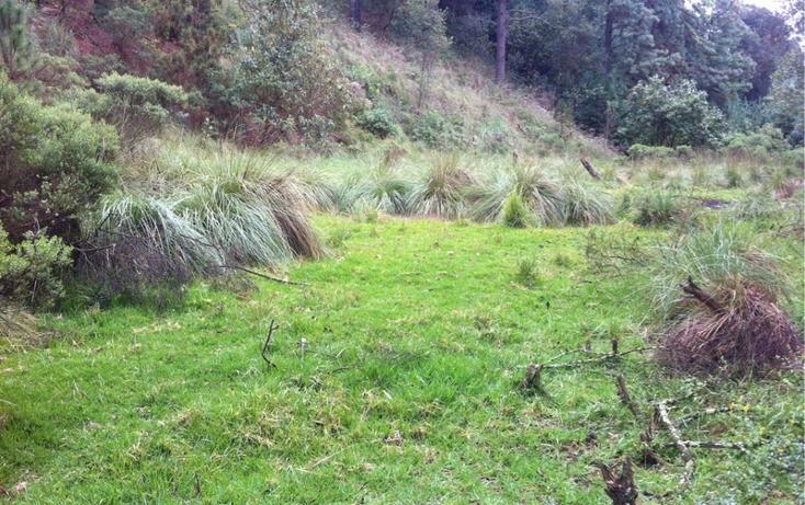 Foto de terreno habitacional en venta en la manzana de san carlos , monte de peña, villa del carbón, méxico, 1384443 No. 05