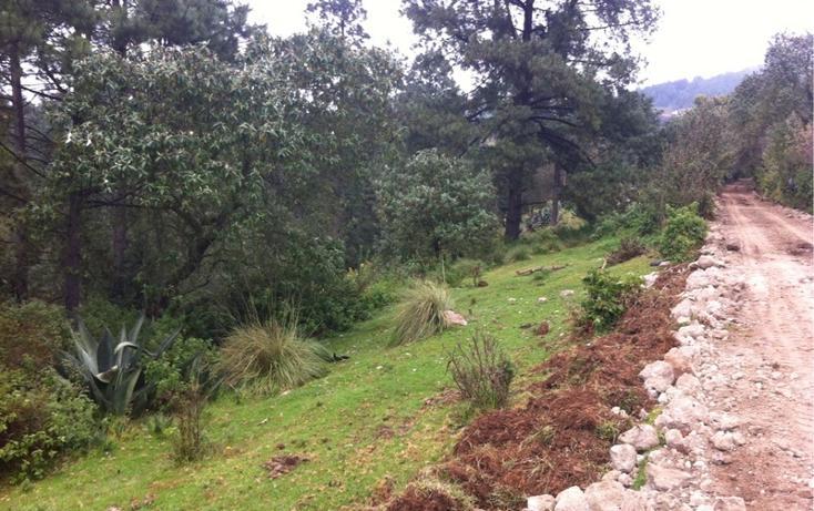 Foto de terreno habitacional en venta en la manzana de san carlos , monte de peña, villa del carbón, méxico, 1384443 No. 06
