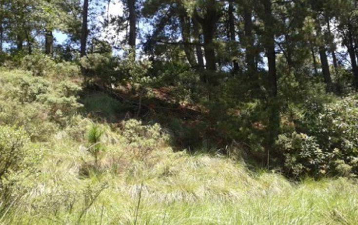 Foto de terreno habitacional en venta en la manzana de san carlos , monte de peña, villa del carbón, méxico, 1384443 No. 07