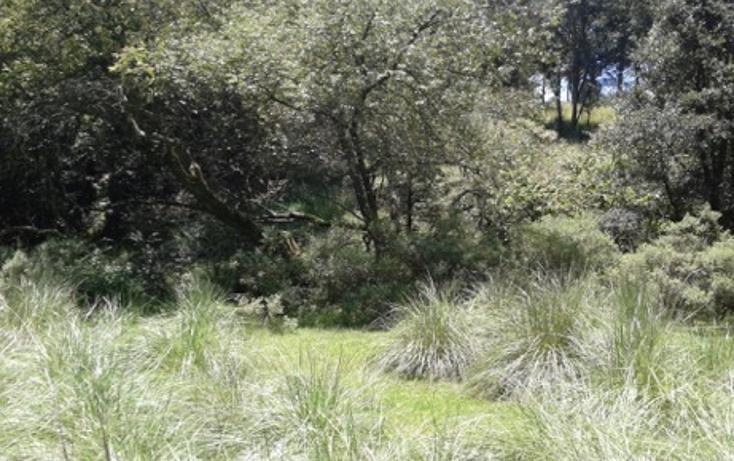 Foto de terreno habitacional en venta en la manzana de san carlos , monte de peña, villa del carbón, méxico, 1384443 No. 09