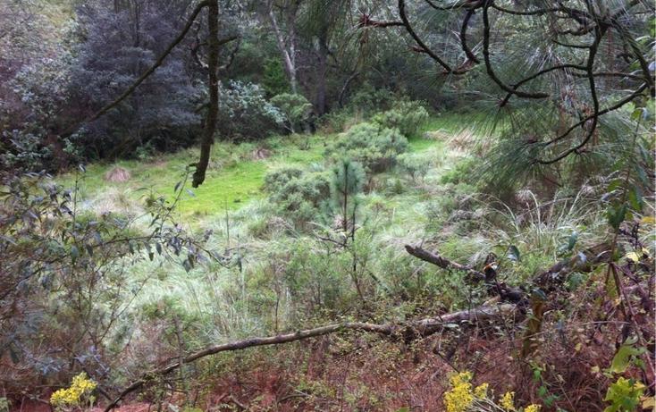 Foto de terreno habitacional en venta en la manzana de san carlos , monte de peña, villa del carbón, méxico, 1384443 No. 16