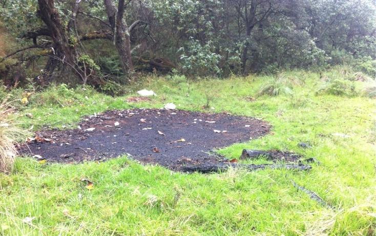 Foto de terreno habitacional en venta en la manzana de san carlos , monte de peña, villa del carbón, méxico, 1384443 No. 18