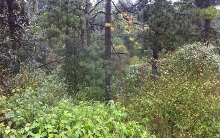 Foto de terreno habitacional en venta en la manzana de san carlos , monte de peña, villa del carbón, méxico, 1384443 No. 31