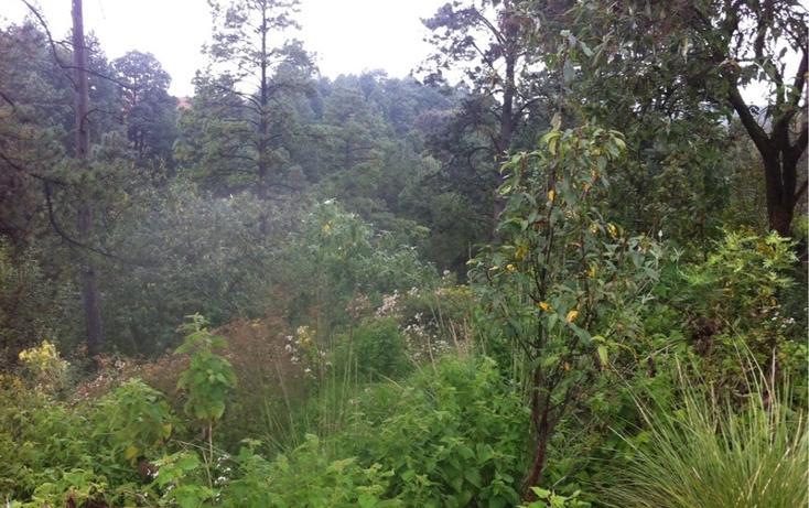 Foto de terreno habitacional en venta en la manzana de san carlos , monte de peña, villa del carbón, méxico, 1384443 No. 32