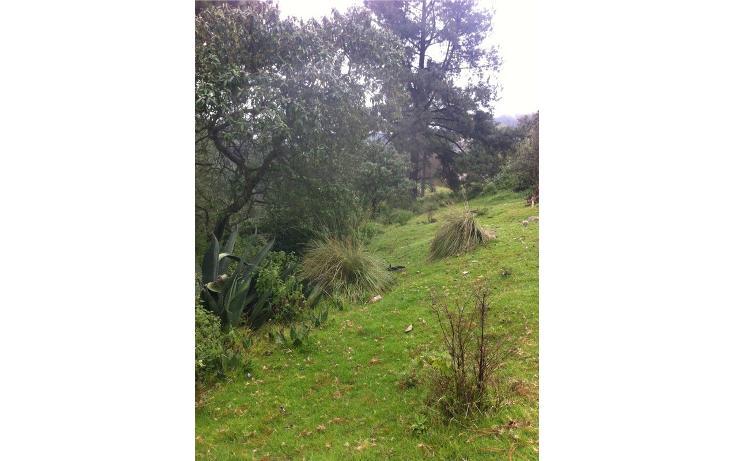 Foto de terreno habitacional en venta en la manzana de san carlos , monte de peña, villa del carbón, méxico, 1384443 No. 33
