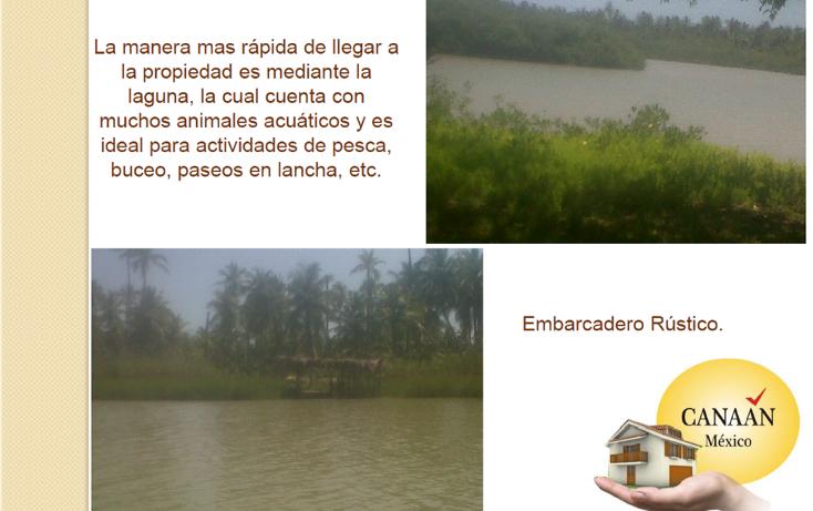 Foto de terreno habitacional en venta en  , la mata, tuxpan, veracruz de ignacio de la llave, 1252909 No. 07