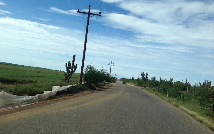 Foto de terreno industrial en venta en  , la matanza, la paz, baja california sur, 1407277 No. 01