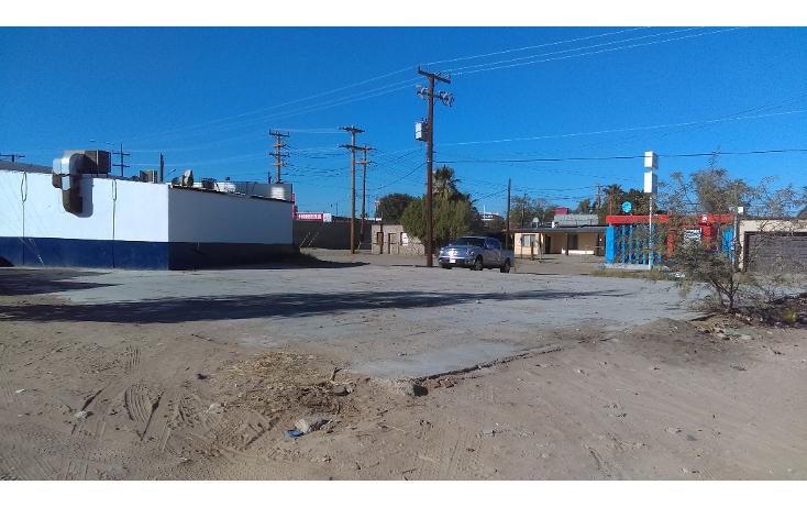 Foto de terreno comercial en renta en  , la mesa, san luis río colorado, sonora, 1052573 No. 03