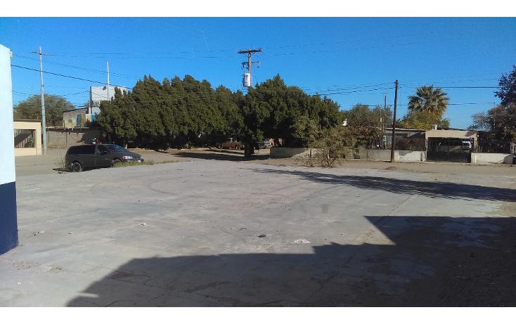Foto de terreno comercial en renta en  , la mesa, san luis río colorado, sonora, 1052573 No. 04