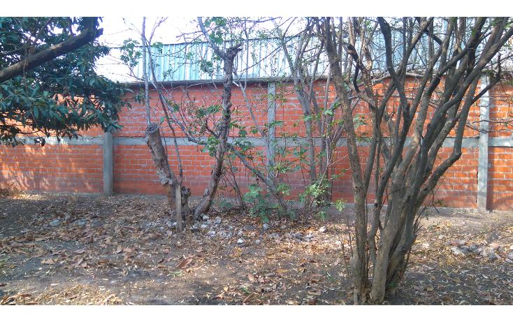 Foto de casa en venta en  , la negreta, corregidora, quer?taro, 1976170 No. 02