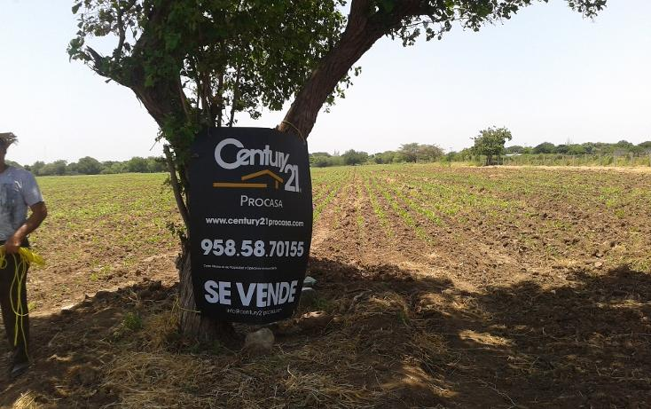 Foto de terreno comercial en venta en  , la noria, santo domingo tehuantepec, oaxaca, 1084987 No. 02