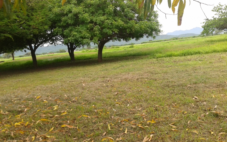 Foto de terreno comercial en venta en  , la noria, santo domingo tehuantepec, oaxaca, 1084987 No. 03