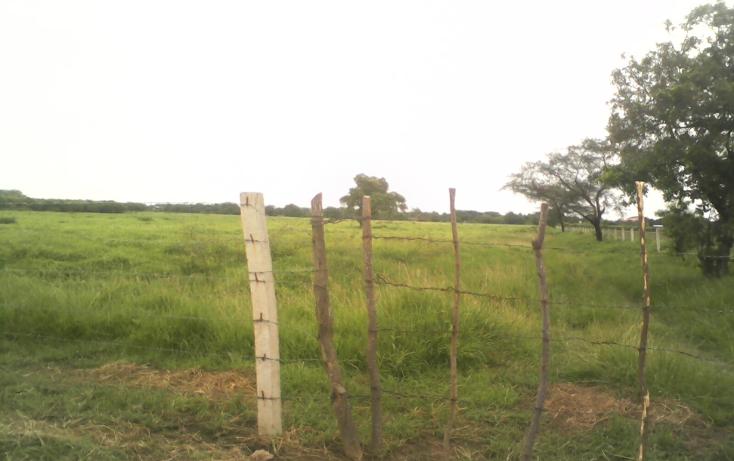 Foto de terreno comercial en venta en  , la noria, santo domingo tehuantepec, oaxaca, 1084987 No. 06