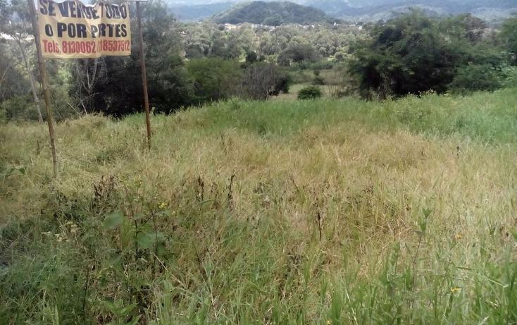Foto de terreno habitacional en venta en  , la orduña, coatepec, veracruz de ignacio de la llave, 1047709 No. 05