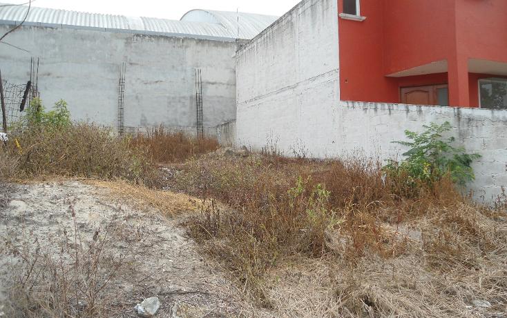 Foto de terreno habitacional en venta en  , la orduña, coatepec, veracruz de ignacio de la llave, 1081679 No. 02