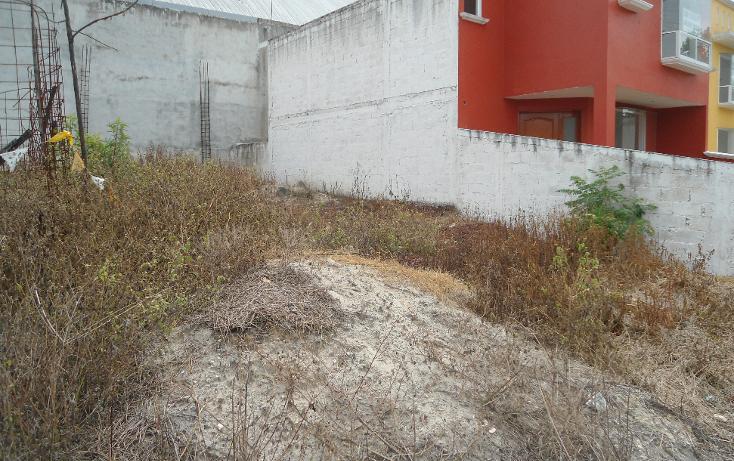Foto de terreno habitacional en venta en  , la orduña, coatepec, veracruz de ignacio de la llave, 1081679 No. 03
