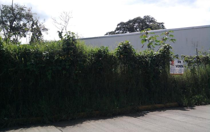 Foto de terreno comercial en venta en  , la orduña, coatepec, veracruz de ignacio de la llave, 1129771 No. 03