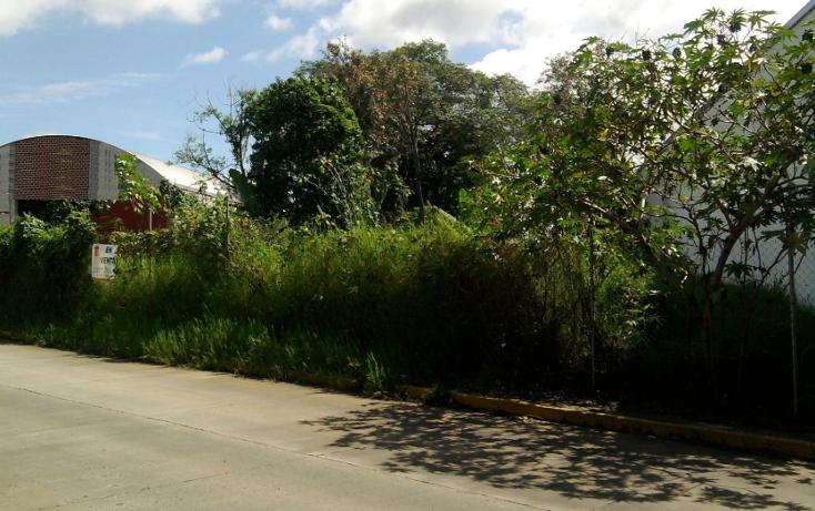 Foto de terreno comercial en venta en  , la orduña, coatepec, veracruz de ignacio de la llave, 1129771 No. 04