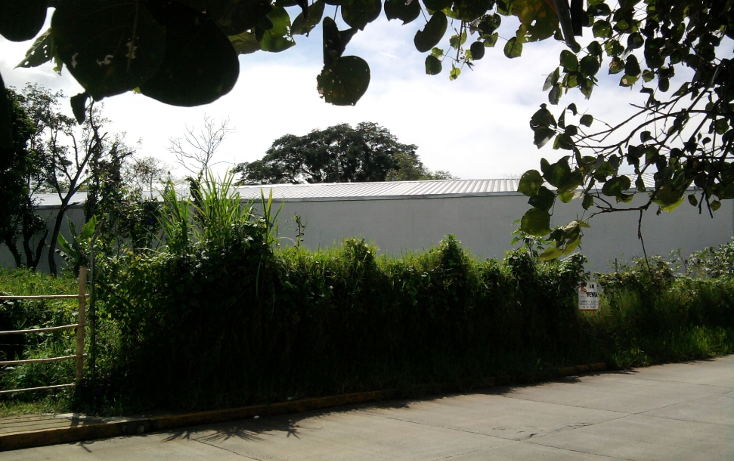 Foto de terreno comercial en venta en  , la orduña, coatepec, veracruz de ignacio de la llave, 1129771 No. 05