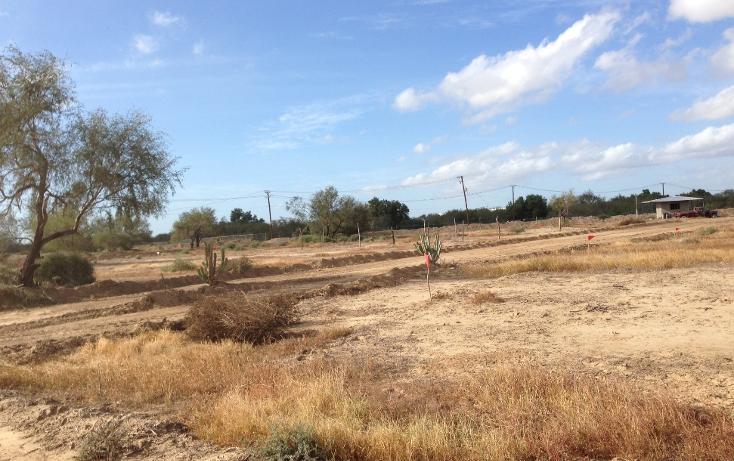 Foto de terreno habitacional en venta en  , la paz (gral. manuel márquez de león), la paz, baja california sur, 1131185 No. 05