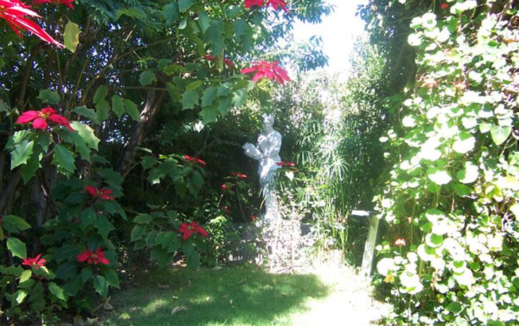 Foto de casa en renta en  , la paz, puebla, puebla, 1193721 No. 07