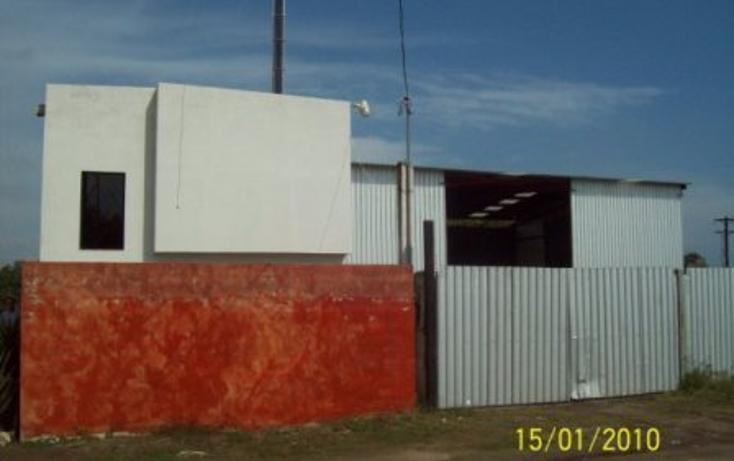 Foto de nave industrial en renta en  , la pedrera, altamira, tamaulipas, 1127259 No. 05