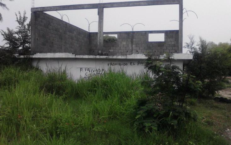 Foto de terreno habitacional en venta en  , la pedrera, altamira, tamaulipas, 1165951 No. 03