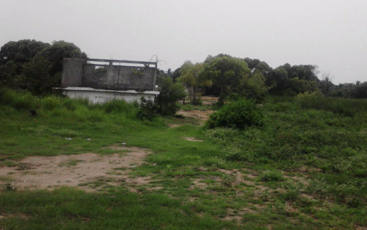 Foto de terreno habitacional en venta en  , la pedrera, altamira, tamaulipas, 1165951 No. 04