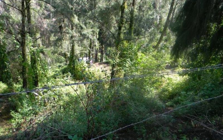 Foto de terreno habitacional en venta en  , valle de bravo, valle de bravo, méxico, 829517 No. 05