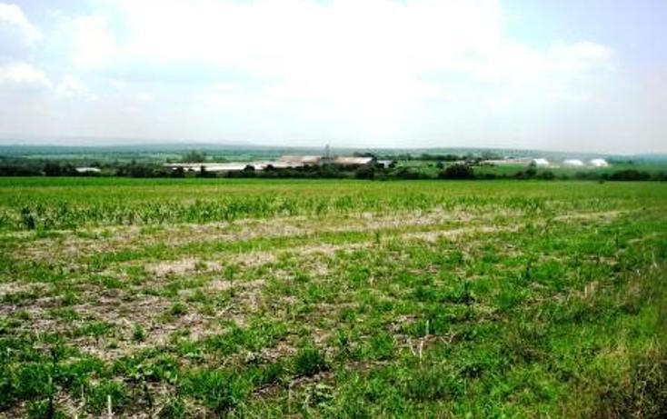 Foto de terreno habitacional en venta en  , la piedad de cavadas centro, la piedad, michoac?n de ocampo, 450450 No. 03