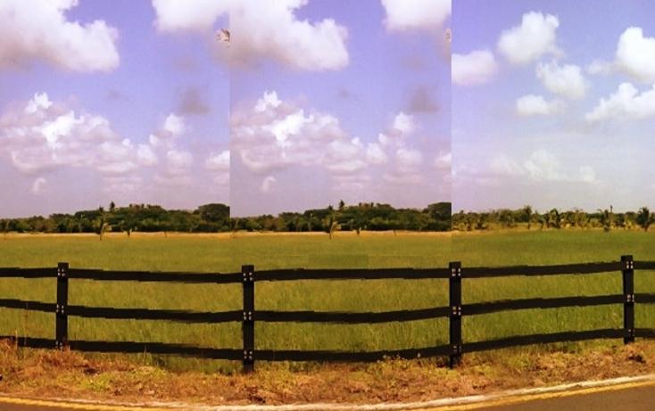 Foto de terreno comercial en venta en  , la piedra, alvarado, veracruz de ignacio de la llave, 1092397 No. 04