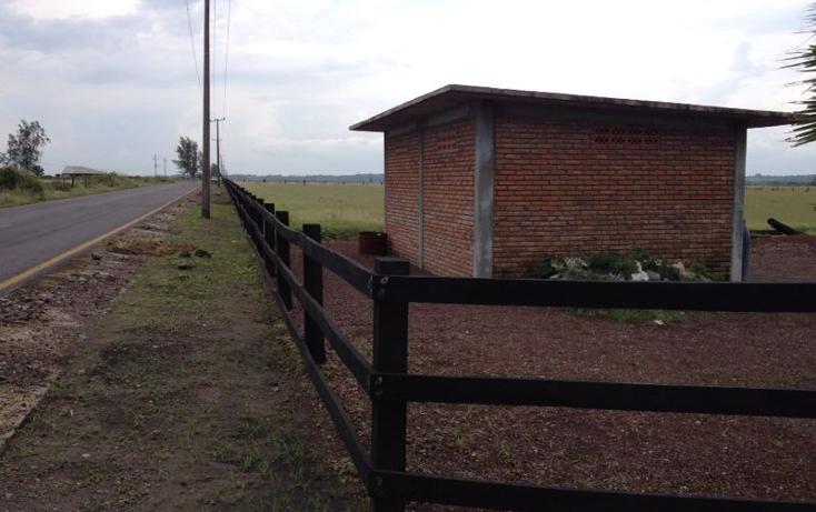 Foto de terreno comercial en venta en  , la piedra, alvarado, veracruz de ignacio de la llave, 1092397 No. 07