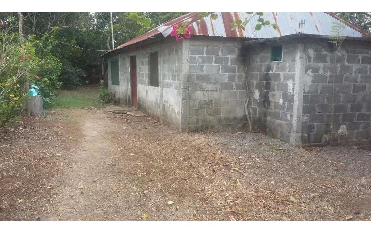 Foto de terreno habitacional en venta en  , la piedra, alvarado, veracruz de ignacio de la llave, 1636006 No. 03