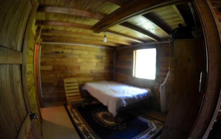 Foto de casa en renta en  , la pitaya, coatepec, veracruz de ignacio de la llave, 821397 No. 04