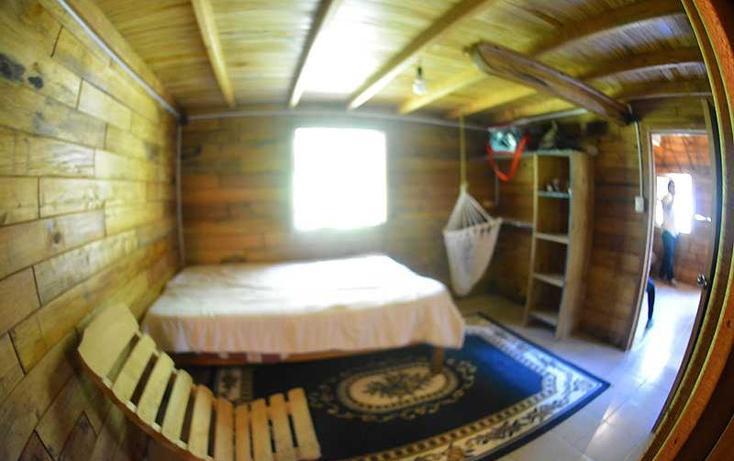 Foto de casa en renta en  , la pitaya, coatepec, veracruz de ignacio de la llave, 821397 No. 06
