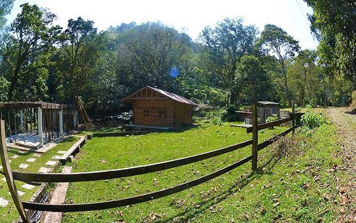 Foto de casa en renta en  , la pitaya, coatepec, veracruz de ignacio de la llave, 821397 No. 11